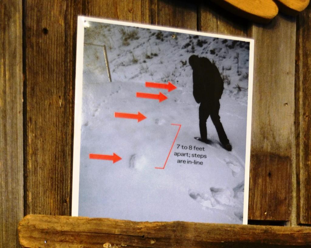 bigfootprints1