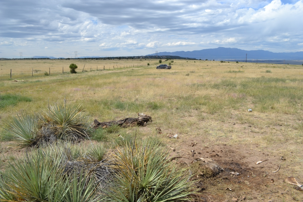 Ranch2a
